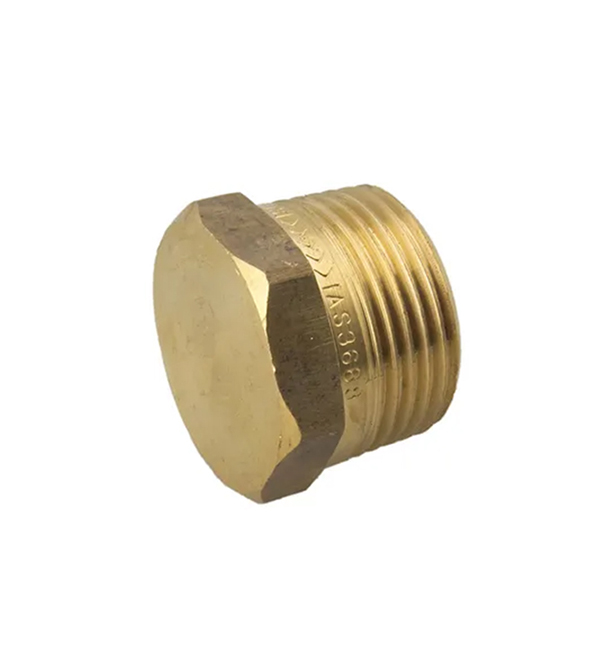 Brass Hexagon Plug