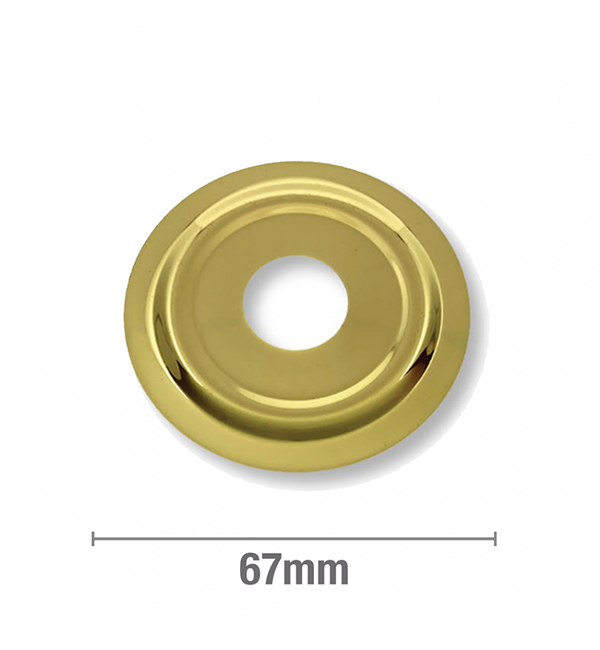 Cover Plate Flat BSP Gold